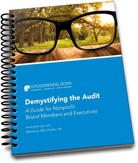 NPO Audit Guide