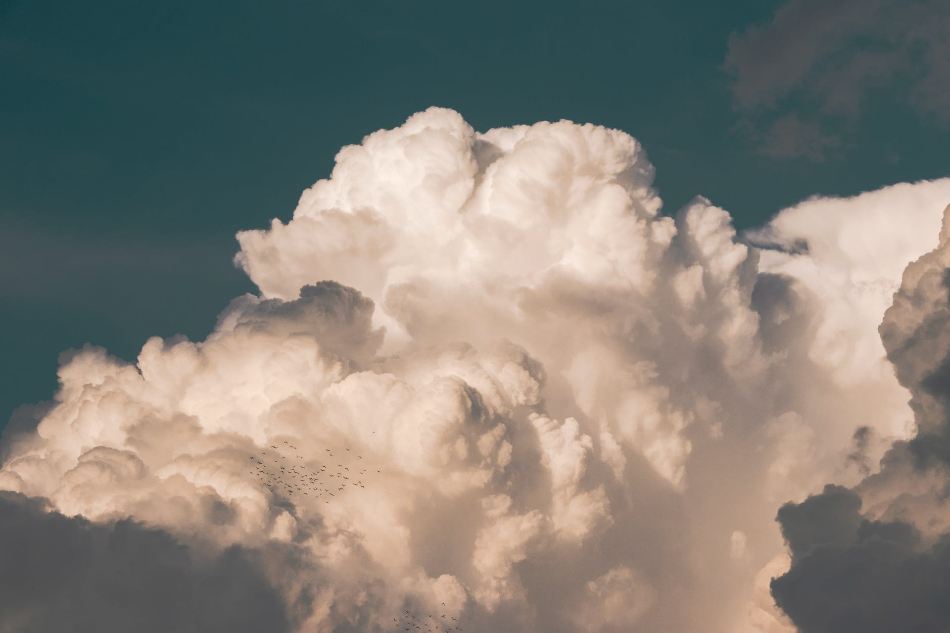 Cloud Hosting: Is It Right for Your Business?